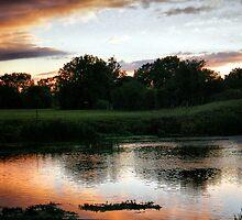 Twilight .... by naturelover