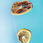 Oranges drying in a sunny sky by AMartshop