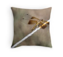 Dragonfly or Damselfly? Throw Pillow