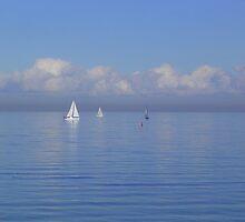 Hampton - Victoria - Australia by bayside2