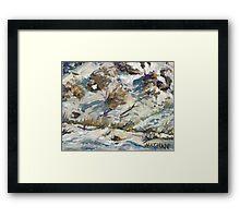 Desert Snow Framed Print