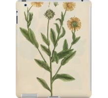 A curious herbal Elisabeth Blackwell John Norse Samuel Harding 1737 0274 Mary golds Marigold Marygold iPad Case/Skin