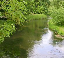 River Test at Wherwell by lezvee