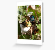 Jewels in your garden Greeting Card