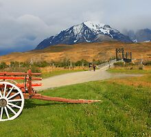 Patagonian Landscape - Torres del Paine National Park by naturalnomad