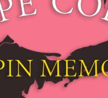 Cape Cod - Chapin Memorial Beach Sticker