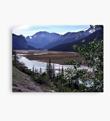 Beauty Creek Flatlands Canvas Print