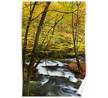LITTLE RIVER,AUTUMN Poster