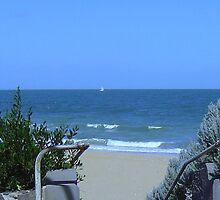 Hampton Beach nr Green Point - Victoria - Australia by bayside2