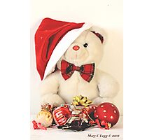 Mr Teddy Bear celebrates Christmas Photographic Print