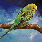 Wild Parakeet by Michael Creese