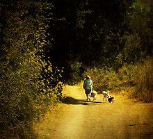 A midsummers walk by Anne  McGinn