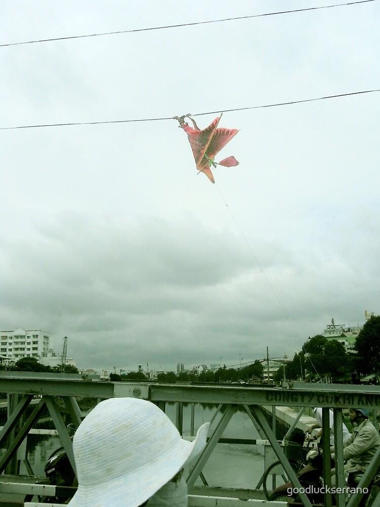 fly dead kite, fly by goodluckserrano