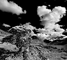 Wastwater Mono by Norfolkimages