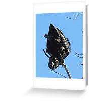 An American Crow hanging out Greeting Card