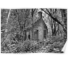 The Old House in the Woods Poster