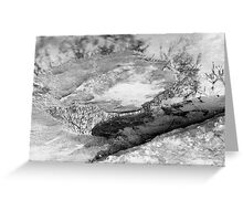 Landscape puzzle Greeting Card