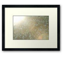 spring sun Framed Print