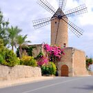 Majorca Mill by Rosy Kueng Photography
