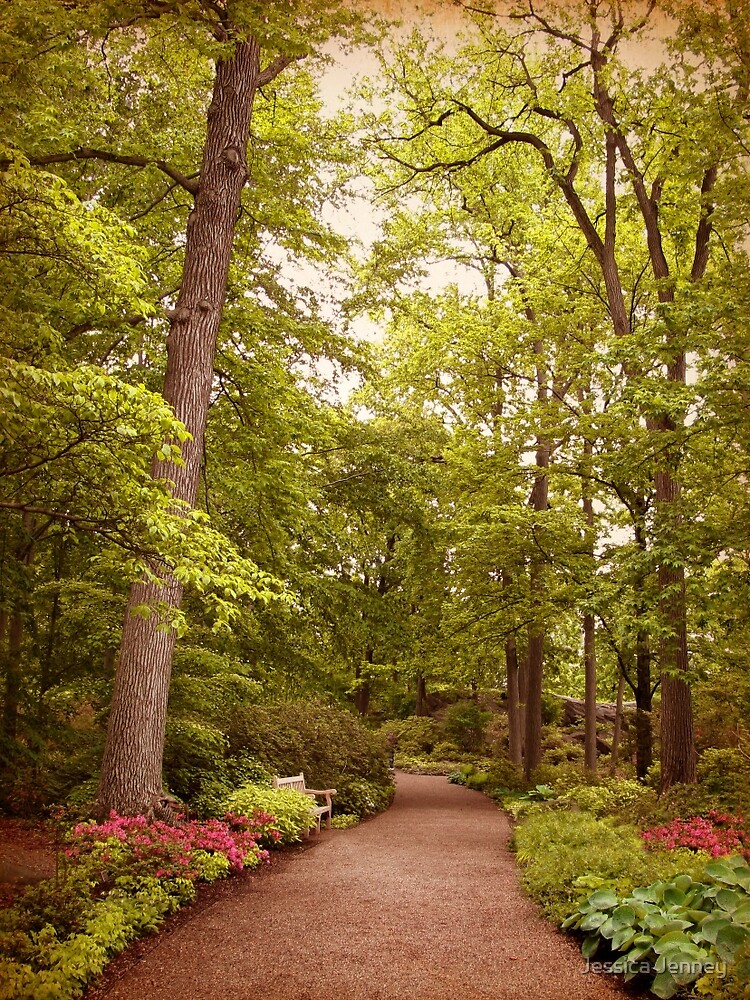 A Secret Garden by Jessica Jenney