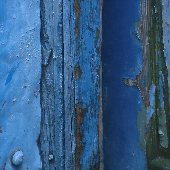 Painted Gate Detail by Sally McDonald