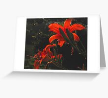 The Glowing Lilies Greeting Card