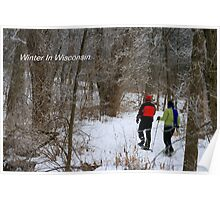 Winter In Wisconsin Poster