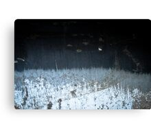 Winter's Waning Moon Canvas Print
