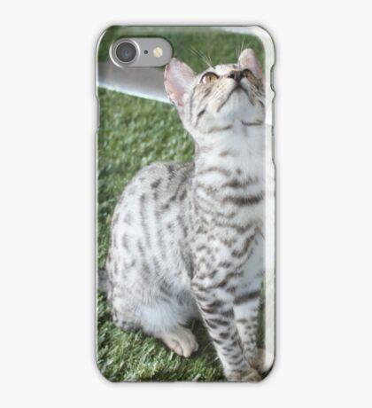 Savannah Cat........ iPhone Case/Skin