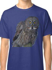 Great Gray Owl Portrait II Classic T-Shirt