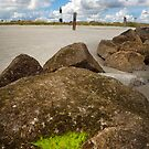 Tybee Lighthouse with Moss by Charlie