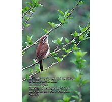 with my song will I praise Him Photographic Print