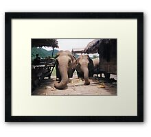 """""""Chilled - Chiang mai"""" Framed Print"""