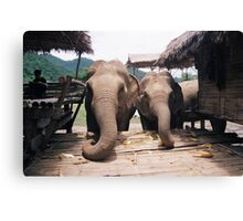 """Chilled - Chiang mai"" Canvas Print"