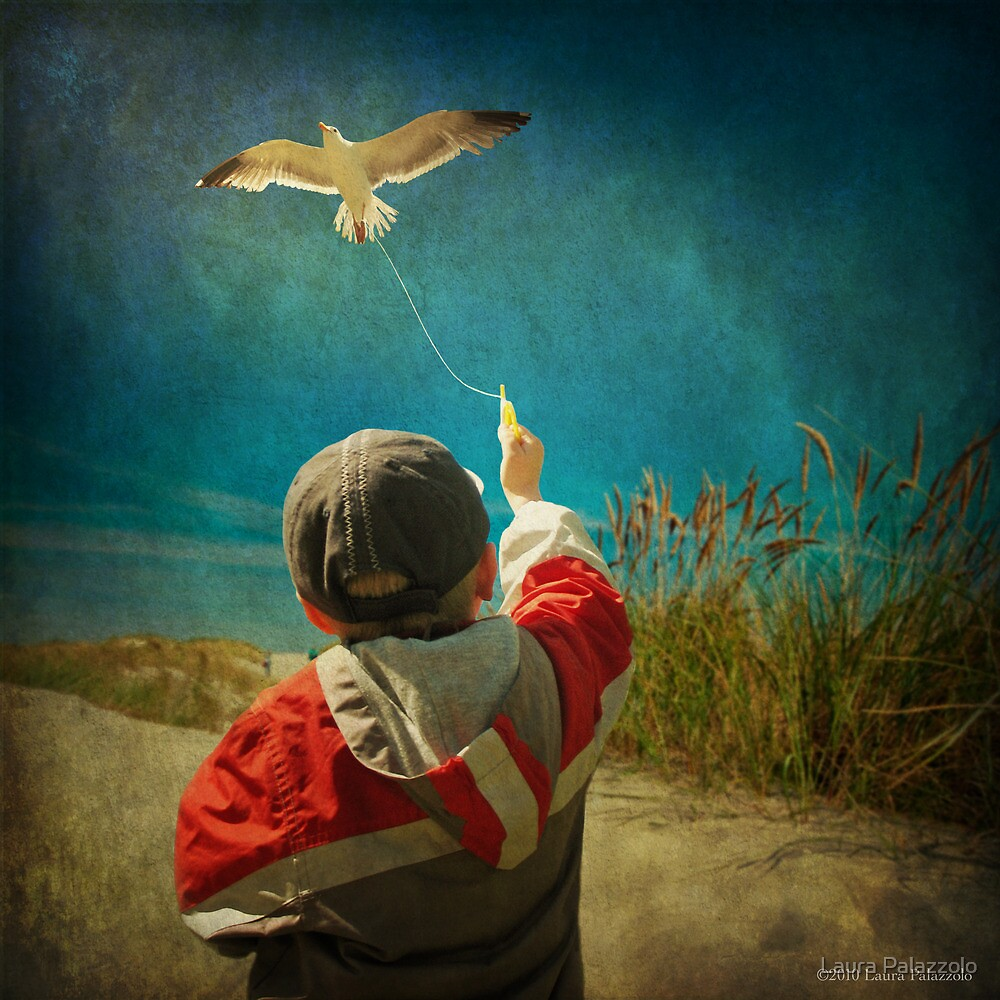 Learning to Fly by Laura Palazzolo