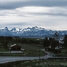 On way out of Bodo by train Bodo to Trondheim 198406210002 by Fred Mitchell