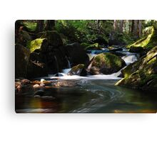 East Jimmy Creek Falls - Wells NY Canvas Print