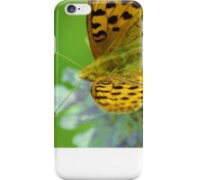 High brown fritillary butterfly iPhone Case/Skin