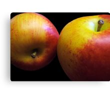 An Apple A Day Keeps the Doctor Bill Away!!! Canvas Print