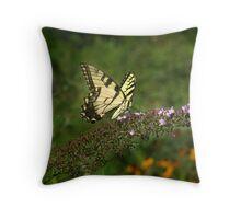 Tiger Swallowtail in the Museum Garden Throw Pillow