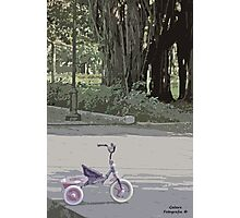 Tricycle in the park Photographic Print
