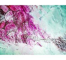 Equilibrium  Photographic Print