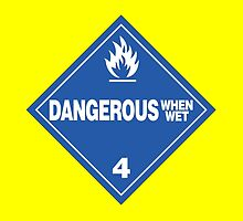 Dangerous when wet by Rupert Russell