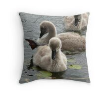 Restful Cygnets Throw Pillow