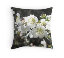 Australian Native Flower Throw Pillow