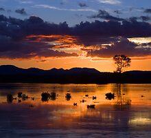 Fern Ridge Sunset by Randall Ingalls