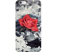 Beauty Rises from the Ashes iPhone Case/Skin