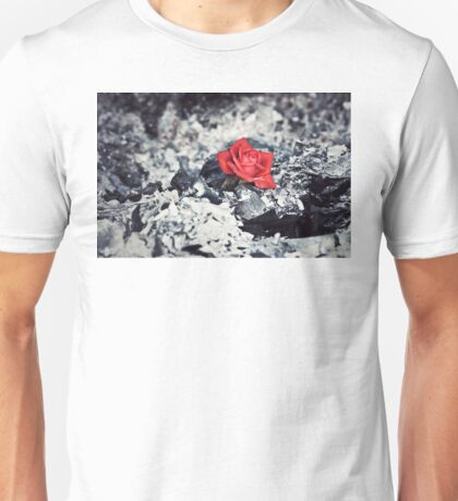 Beauty Rises from the Ashes Unisex T-Shirt