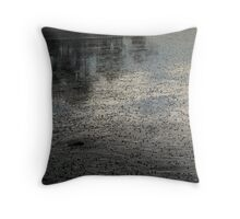 Wet Sand and Reflections Throw Pillow