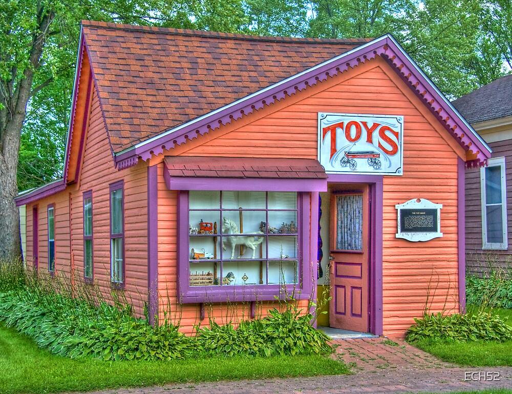 Toy Shop by ECH52
